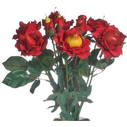 12 Stem Just Fruit Roses Bouquet