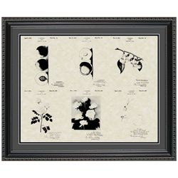 Luther Burbank Botanist 20x24 Framed Patent Art