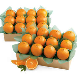 All-Time Favorite Western Navel Oranges