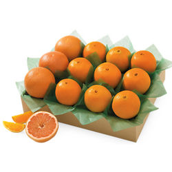 Catalina Citrus Fruits Gift Box