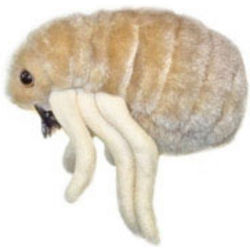 Flea Plush Doll