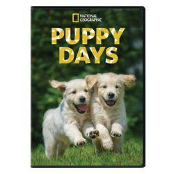 Puppy Days DVD-R