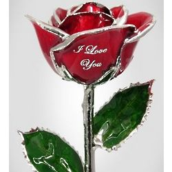 "11"" I Love You Red Rose"