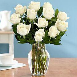 One Dozen Long Stemmed White Rose Bouquet