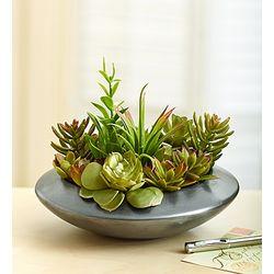 Faux Succulent Dish Garden
