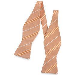 Striped Woven Silk Self-Tie Bow Tie