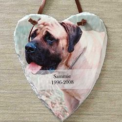 Pet Memorial Personalized Photo Heart Plaque
