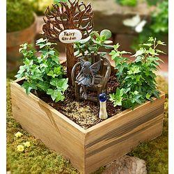 Miniature Lush Fairy Garden