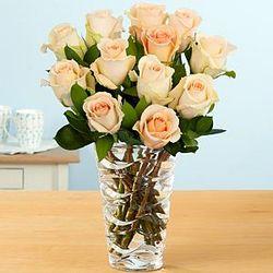 Dozen Long Stemmed Peach Roses