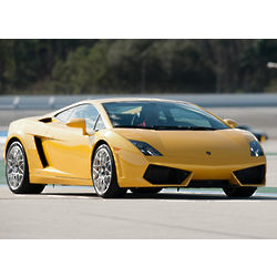 Race a Lamborghini Driving Experience