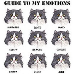 Guide to My Emotions Cat T-Shirt