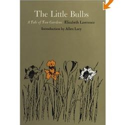 The Little Bulbs - A Tale of Two Gardens Book