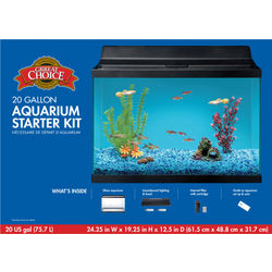 20 Gallon Aquarium Starter Kit