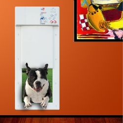 Power Pet Medium Electronic Pet Door