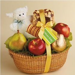 New Baby Fruit and Treat Gift Basket