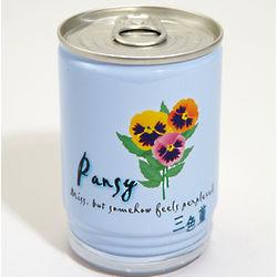 Mini Flower Garden in a Can