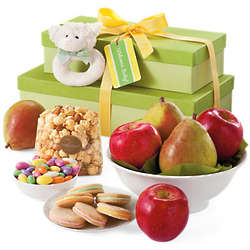 New Baby Fruit and Treat Gift Tower