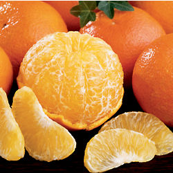 Temple Oranges Small Sampler