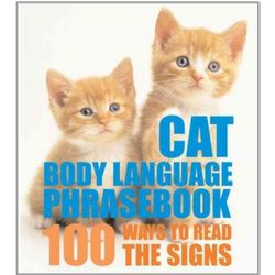 Cat Body Language Phrasebook