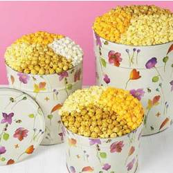 Garden Buzz 2 Gallon 3-Way Popcorn Tin