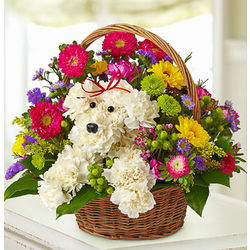A-DOG-able Flowers in a Basket