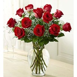 Dozen Rose Elegance Long Stem Red Roses