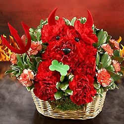 Devil Dog Flower Basket Bouquet
