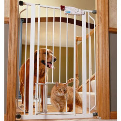 Extra-Tall Walk-Through Metal Gate with Small Pet Door