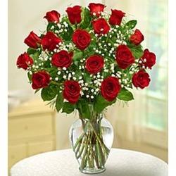 Rose Elegance 18 Premium Long Stem Red Roses