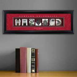 Harvard University College Art Print