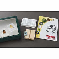 Insect Mounting Kit