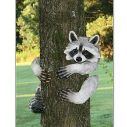 Raccoon Tree Hugger