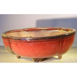 Oval Parisian Red Ceramic Bonsai Pot