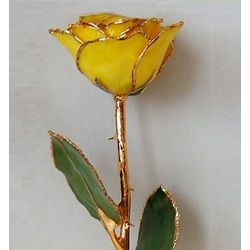 Preserved Gold Accented Yellow Rose