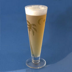 Frosted Palm Pilsner Glasses