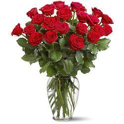Two Dozen Roses in a Lovely Vase