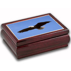Patriotic Eagle Jewelry Music Box