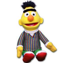 Sesame Street Bert Stuffed Toy
