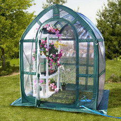 Clear PlantHouse 5' Greenhouse