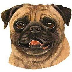Pug Dog Breed T-Shirt