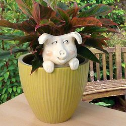 Ceramic Pig Potted Plant Buddy