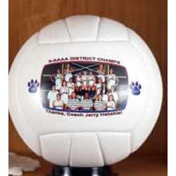 Full Size Personalized Photo Volleyball Trophy