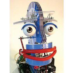BotBrain Animatronic Head