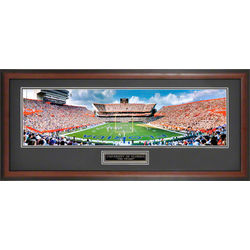 Florida Gators Ben Hill Griffin Stadium Framed Panoramic Photo