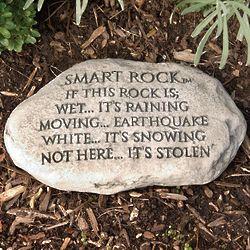 Smart Rock Resin Garden Stone