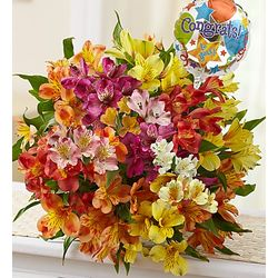 50 Blooms of Peruvian Lilies with Congratulations Balloon