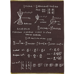 Math Equations and Formulas Dish Towel