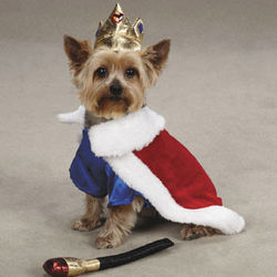 Royal Pup Costume with Squeaker Toy
