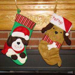 Favorite Dog Personalized Christmas Stocking
