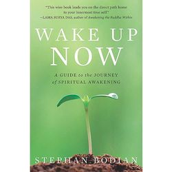 Wake Up Now Paperback Book
